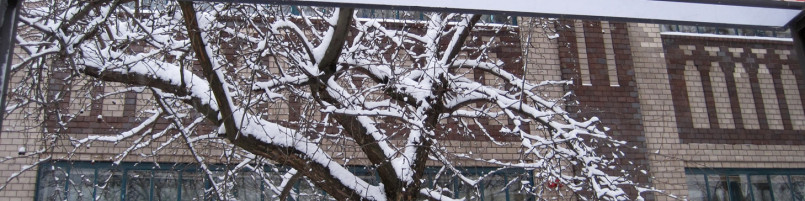 Eingang Labyrinth Kindermuseum im Schnee